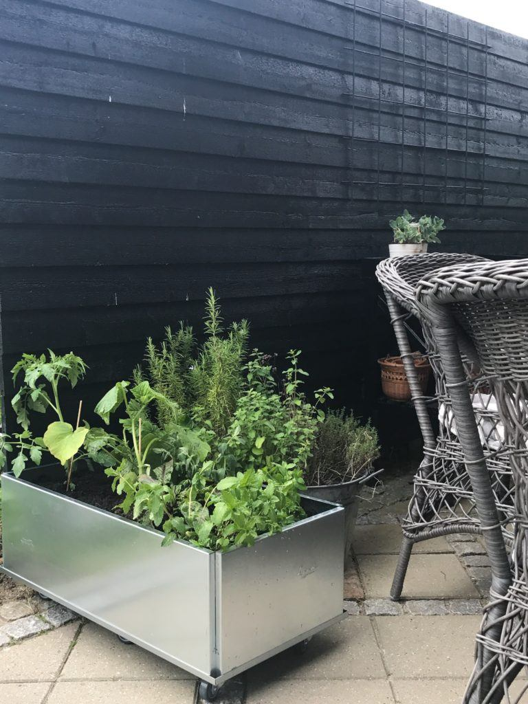 højbede udeliv inspiration have terrasse terrasseliv planter græsser